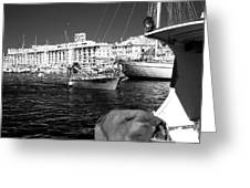 Coming Home In Marseille Greeting Card by John Rizzuto