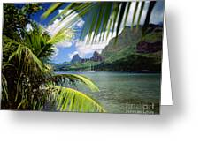 Cooks Bay With Sailboat Greeting Card by Ron Dahlquist - Printscapes