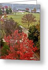 Coolidge Park Path Greeting Card by Tom and Pat Cory