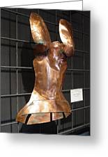 Copper Breast Plate Greeting Card by Steve Mudge