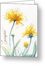 Coreopsis Greeting Card by CheyAnne Sexton