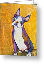 Cosmo Greeting Card by Pat Saunders-White