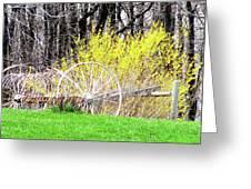 Countrified Spring Greeting Card by Debra     Vatalaro