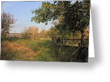 Country Lane Greeting Card by Jim Sauchyn
