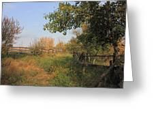 Country Lane Greeting Card by Jim Sauchyn
