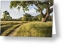 Country Road Greeting Card by Sharon Foster