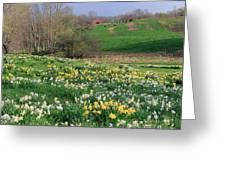 Country Spring Greeting Card by Bill Wakeley