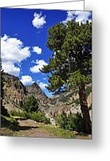 Creede Greeting Card by Skip Hunt