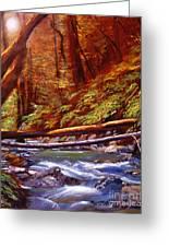 Creek Crossing Greeting Card by David Lloyd Glover