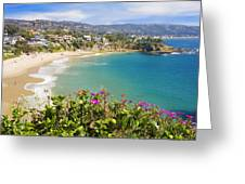 Crescent Bay Laguna Beach California Greeting Card by Utah Images