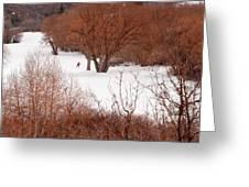 Crosscountry Skier Greeting Card by Utah Images