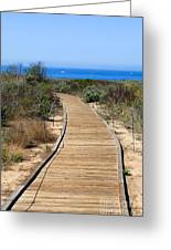 Crystal Cove State Park Wooden Walkway Greeting Card by Paul Velgos