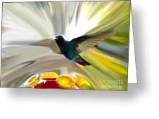 Cuenca Hummingbird Series 1 Greeting Card by Al Bourassa
