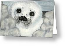 Curious Arctic Seal Pup Greeting Card by Tanna Lee M Wells