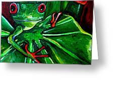 Curious Tree Frog Greeting Card by Patti Schermerhorn