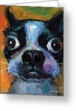 Cute Boston Terrier Puppy Art Greeting Card by Svetlana Novikova