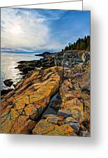 Cutler Coast Lichen Greeting Card by Bill Caldwell -        ABeautifulSky Photography