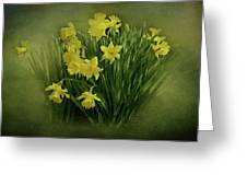 Daffodils Greeting Card by Sandy Keeton