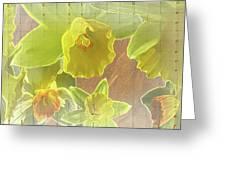 Daffy Daffodils Greeting Card by Debra     Vatalaro