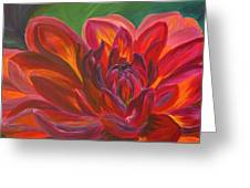 Dahlia Greeting Card by Donna Drake