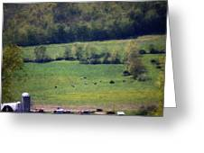 Dairy Farm In The Finger Lakes Greeting Card by David Lane