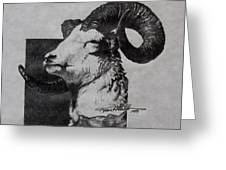 Dall Ram Greeting Card by Karon Melillo DeVega