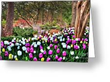 Dallas Arboretum Greeting Card by Tamyra Ayles