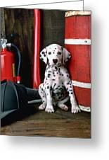 Dalmatian Puppy With Fireman's Helmet  Greeting Card by Garry Gay