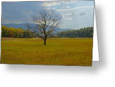 Dare To Stand Alone Greeting Card by Michael Peychich