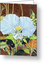 Day Flower Greeting Card by Beverly Fuqua