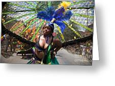 Dc Caribbean Carnival No 12 Greeting Card by Irene Abdou