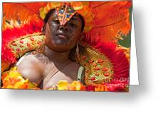 Dc Caribbean Carnival No 22 Greeting Card by Irene Abdou