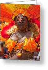 Dc Caribbean Carnival No 23 Greeting Card by Irene Abdou