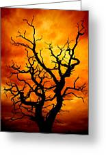Dead Tree Greeting Card by Meirion Matthias