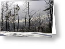 Deep Freeze Greeting Card by Cindy Gacha