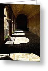 Deep Shadows Greeting Card by Olden Mexico