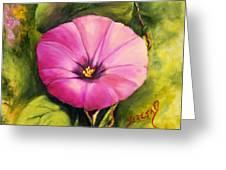 Dee's Morning Glory Greeting Card by Teresa Lynn Johnson