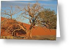 Desert Beauty Greeting Card by Joe  Burns