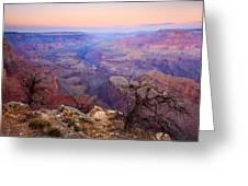 Desert Glow Greeting Card by Mike  Dawson