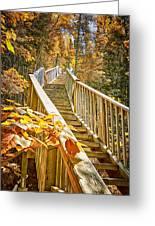 Devil's Kettle Stairway Greeting Card by Linda Tiepelman