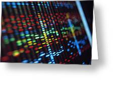 Dna Sequence On A Computer Monitor Screen Greeting Card by Tek Image