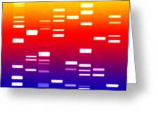 Dna Sunset Greeting Card by Michael Tompsett