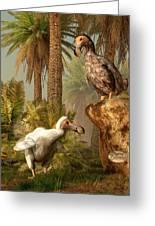 Dodo Hide N Seek Greeting Card by Daniel Eskridge