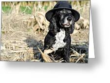 Dog with a hat Greeting Card by Mats Silvan