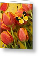 Dogface Butterfly And Tulips Greeting Card by Garry Gay