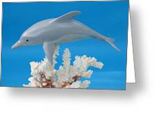 Dolphin On Coral Greeting Card by Jack Murphy