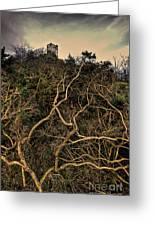 Dolwyddelan Castle Greeting Card by Meirion Matthias
