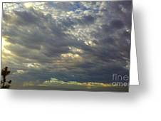 Down Blanket Greeting Card by Tracy Evans