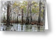 Down On The Bayou - Digital Painting Greeting Card by Carol Groenen