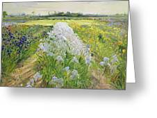 Down the Line Greeting Card by Timothy Easton